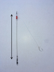 Basic Bottom Fishing Rigs